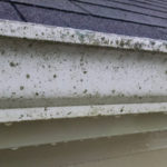 Toledo Gutter Cleaning, Toledo Gutter Washing, Residential Gutter Cleaning Toledo, Perrysburg Gutter Cleaning, Temperence Lambertville Gutter Cleaning, Gutter Cleaning, Sylvania Gutter Cleaning, Team H2O Spray